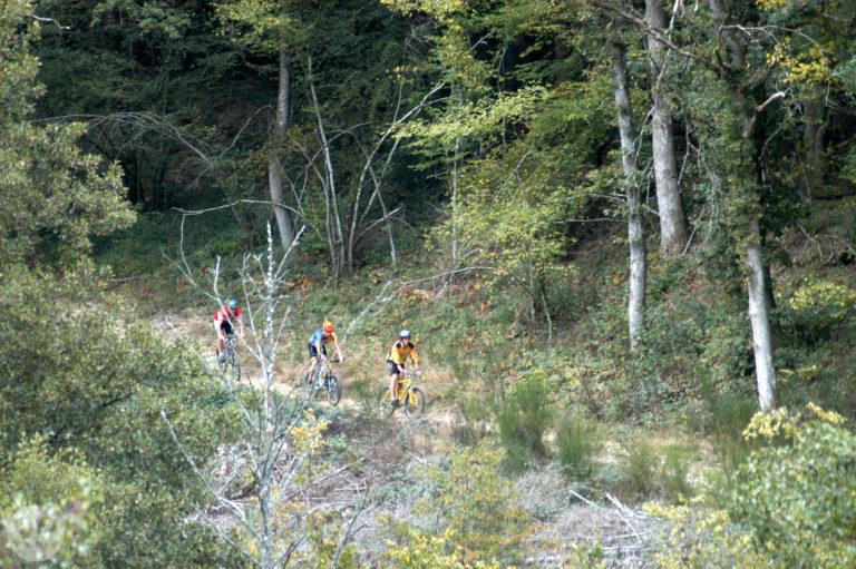 La GTM, 330kms de chemins VVT à travers le Parc du Morvan